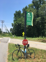 View on the Swamp Rabbit Trail