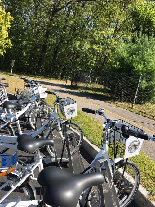 Marlborough Bikes