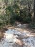 FL Bike ride never far from sand
