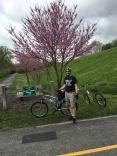 St louis bike riding