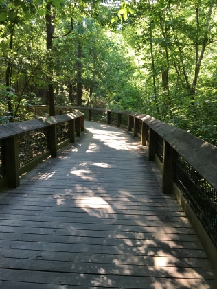 walking in columbia boardwalk trail