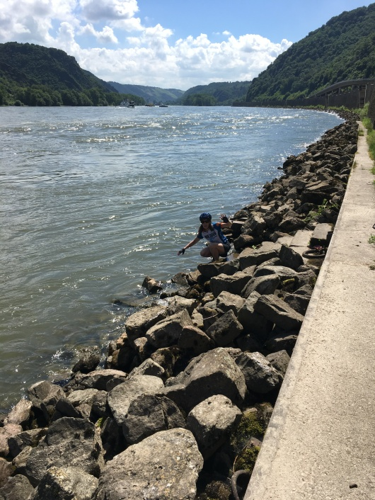 Bike tour 2018 Kim checking out the Rhine