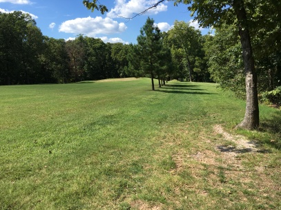 Old first fairway