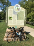 Greenway bike picture