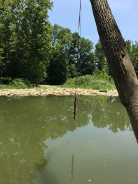 Sperti Park Gunpowder Creek Rope Swing