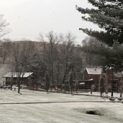Snow at Maker's Mark