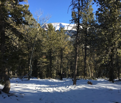 Hike 2 CS 2018 View of Pikes peak from the trail