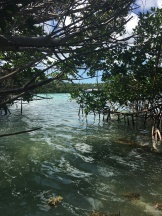 Ride to Keys 2019 fifth day--ride around Key West Kayak adventure 5