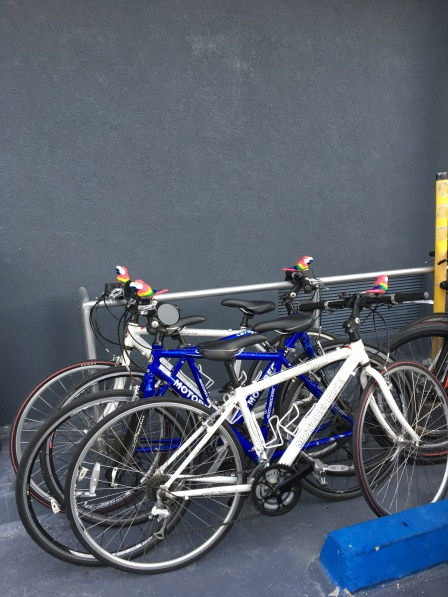 Ride to Keys 2019 first day bikes ready