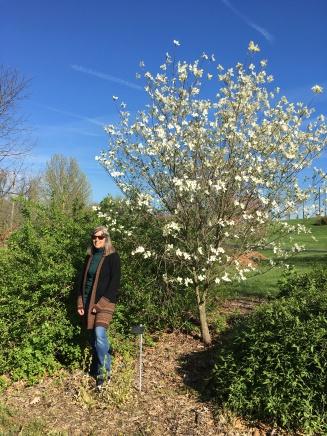 Spring in Cincinnati