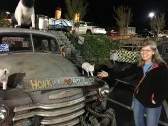 You should honk!