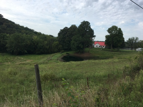 On 338--property for sale