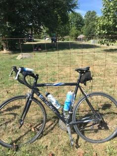 Wabash bike